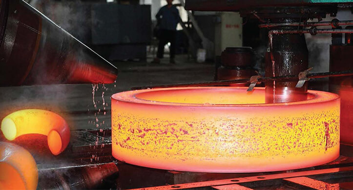 Steel 317 Forgings